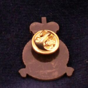 RAF Regiment Bronze Finish Lapel Pin-2