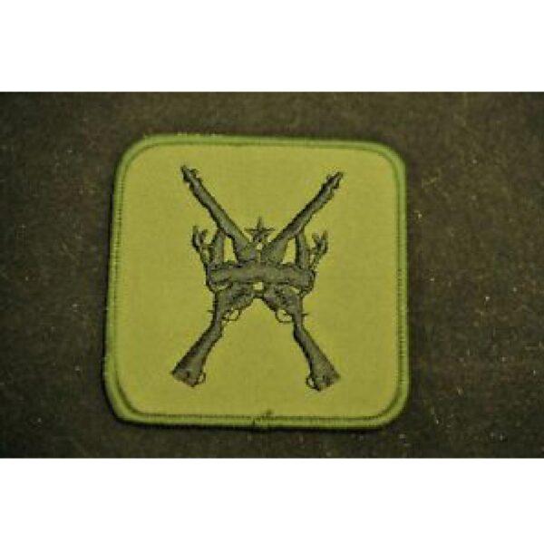 RAF Regiment D2 Patch 2